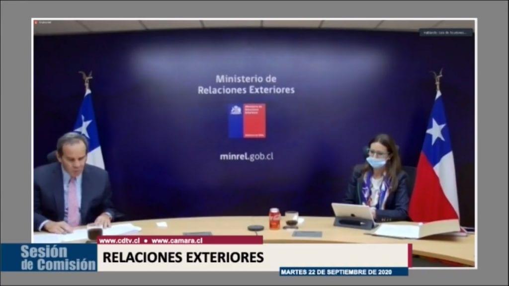 El Canciller Andrés Allamand, junto a la Ministra del Medio Ambiente, Carolina Schmid,t presentando ante la Comisión de Relaciones Exteriores de manera telemática.